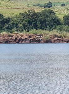 Uma pedra gigante chama a atenção no meio do rio Uruguai