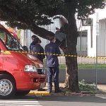 Mulher sobe em árvore, amarra corda no pescoço e ameaça se suicidar