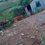 Por seguro de R$ 500 mil, filha mata pai com ajuda de namorado no RS