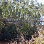 Vídeo – Ponte suspensa ameaça desabar no rio Turvo, em Três Passos