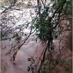 Vídeo – Mulher flagra momento em que ponte é levada por enchente no rio Buricá