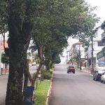Governo do RS não acata recurso e Três Passos permanece em bandeira vermelha