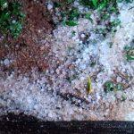 Moradores registram queda de granizo em Três Passos e Esperança do Sul