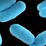 Bactéria vaza de laboratório e infecta mais de 3 mil pessoas na China